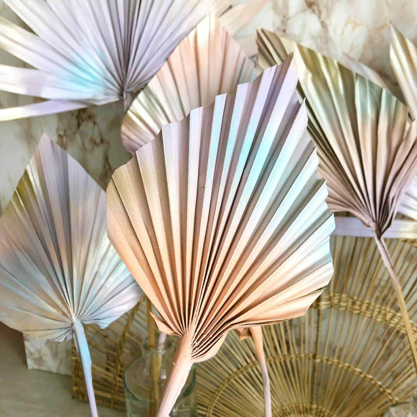 mermaid palmspears